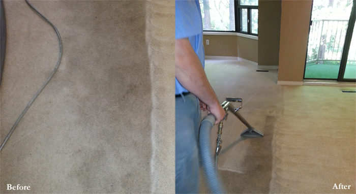 Carpet Cleaners London Ontario